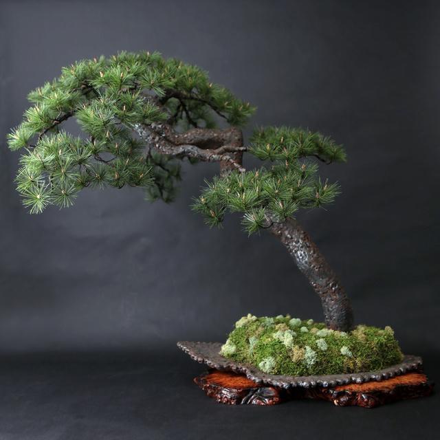 【本物以上】あふれる生命力が見事な盆栽…を「鉄筋」で美麗に再現した新しいアート!! ここまでくると日本の心を描くひとつの芸術作品だわ…