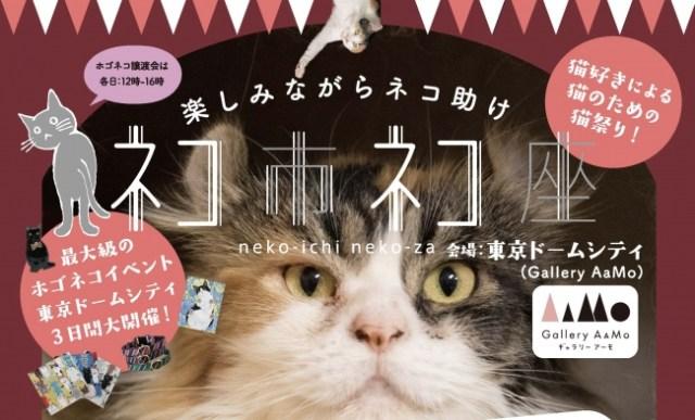 【本日から】猫好きによる猫好きのための猫祭り「ネコ市ネコ座」が開催されるニャ~! 楽しみながら保護猫を助けることができるんだって