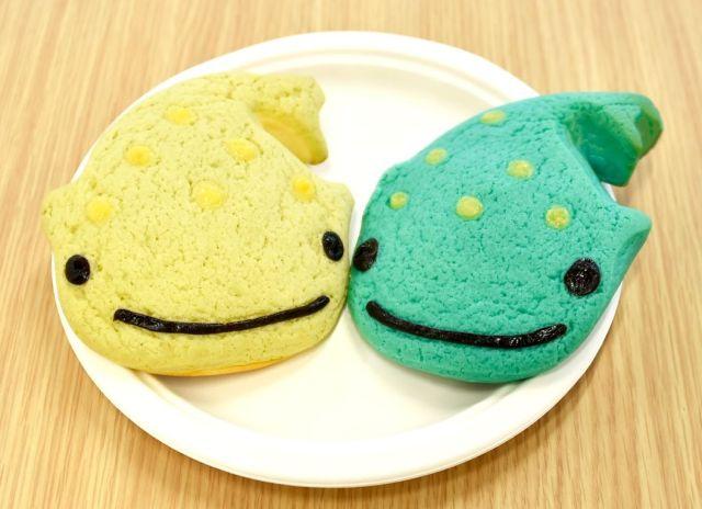 【海遊館】ジンベエザメをイメージしたメロンパンが可愛すぎる!! じ~っと見つめられたら食べられないよー!