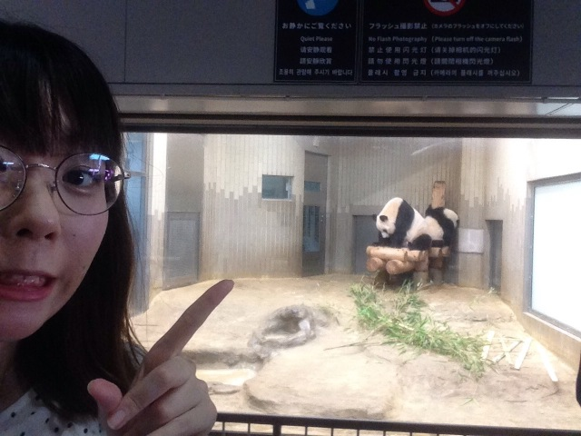 上野動物園でパンダのシャンシャンを見るために炎天下でひとり並んでみた / 意外な穴場の時間帯を発見したよ