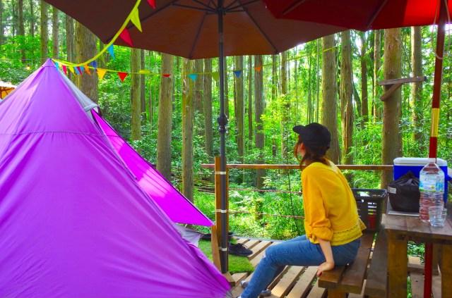 キャンプ初心者女が「ソロキャンプ」を体験してみた / 完全手ぶらOKの最高なキャンプ場だけど自然は甘くなかったヨ…
