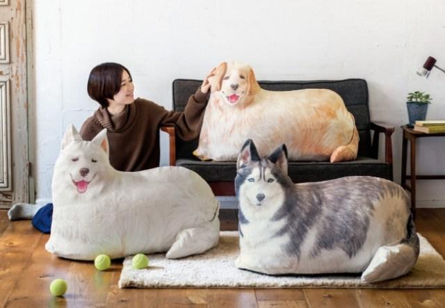 大型犬をおもいっきりモッフモフできちゃう★ フェリシモの「布団収納ケース」は存在感も収納力も抜群ですぞッ