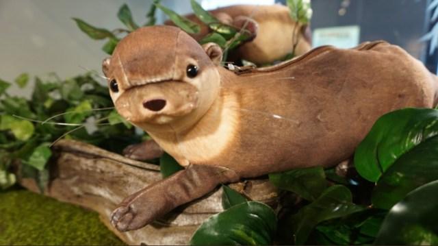 人気の「もっちりカワウソポーチ」に水族館の海遊館が愛あるダメ出し! 「ひじ毛がない」「触覚がない」など改良を重ねた結果…!