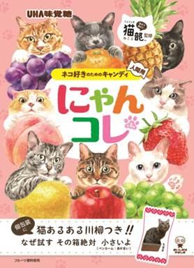 猫あるあるが書かれた川柳のキャンディにグッとくる…ネコ好きのためのキャンディ「にゃんコレ」がじわる