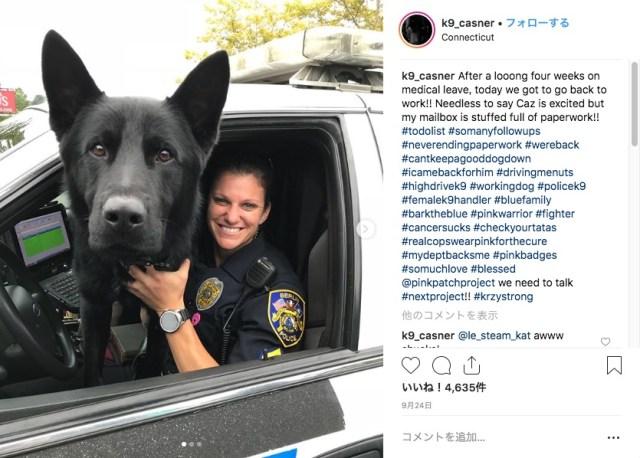 ワンコにだってオンとオフの顔がある! 警察犬の日常生活を紹介するインスタアカウントにご注目☆