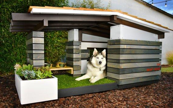 今どきの「犬小屋」の進化ぶりがすごい! 下手したら人間の家より豪華な気がするんですケド…