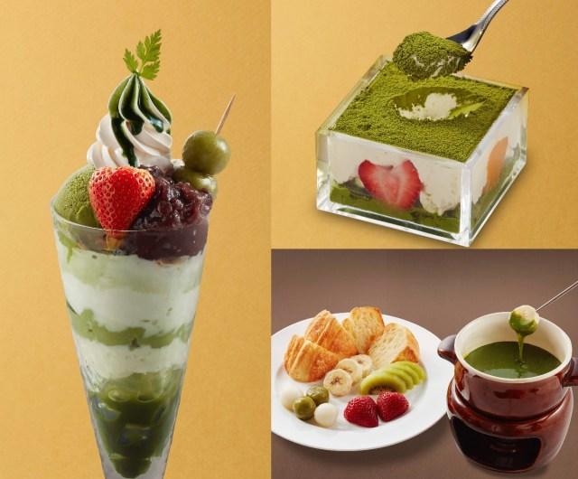 ジョナサンの「お濃い抹茶フェア」デザートがおいしそおおおお! パフェに抹茶フォンデュに枡入りティラミスと豪華だよ