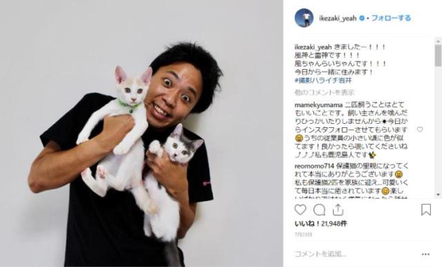 サンシャイン池崎のインスタグラムが「ニャンスタグラム」になってるイェェエエエエイ!!! 保護猫たちとの愛ある生活にほっこり♡
