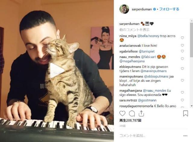 ご主人の弾くピアノが大好きな甘えんぼ猫♪  だけどそこに他のネコが来て三角関係に…!?