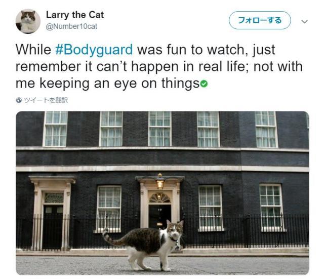 イギリスの名物猫・ラリーは国民に愛される超人気者♪ 役職は「最高ネズミ捕り責任者」です