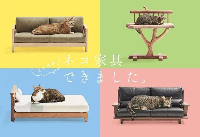 「これホントにネコ様用!?」家具職人が本気で作った「ネコ家具」の展覧会が代官山で開催されるよーっ! 人間用と見紛うほどの高級感です