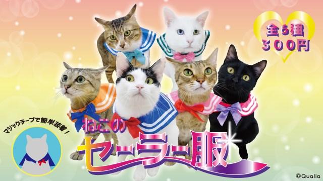 【尊い】猫がセラムンに大変身!! トイカプセルから「猫用セーラー服」アイテムが登場したニャ〜★