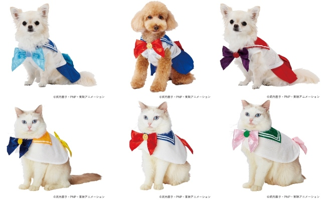 愛するペットがセーラームーンに変身!? 人気キャラクターをモチーフにしたペット用品ブランドが爆誕しました
