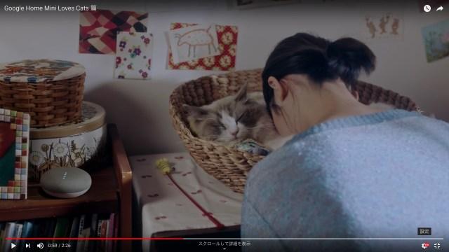 もふもふチャンスを逃すな! Google Homeの「猫好きにしかわからない幸せ」動画があるあるすぎる…