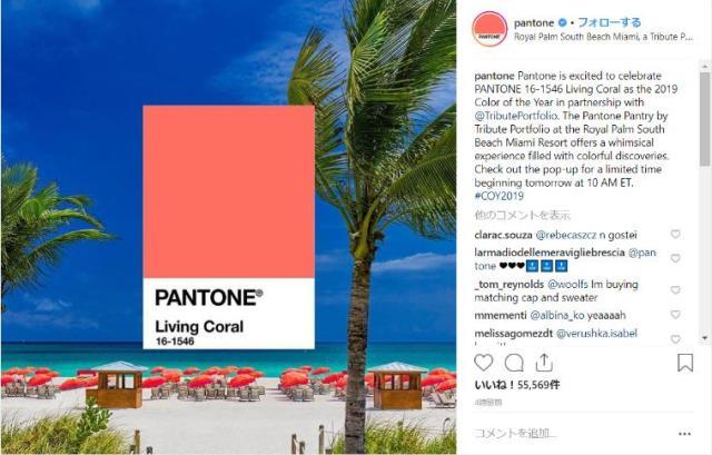 2019年の色は「リビングコーラル」とPANTONE社が発表! サンゴみたいなイキイキとしたピンク色だよ