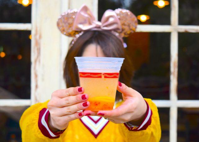 【ディズニーシー】寒い季節限定「ホットアルコール」オススメ3選を酒好きがピックアップ! 飲みやすさや購入時間などをまとめてみたよ★