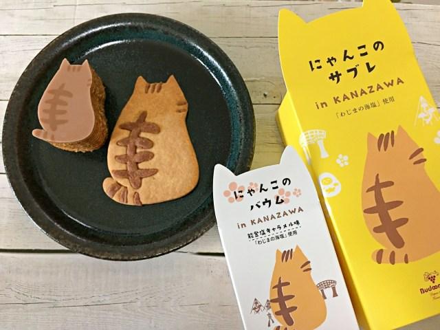 【猫好き必見】金沢限定「にゃんこのバウム」「にゃんこのサブレ」が期間限定でお取り寄せ可能に! トラ猫の可愛さを味わって♡