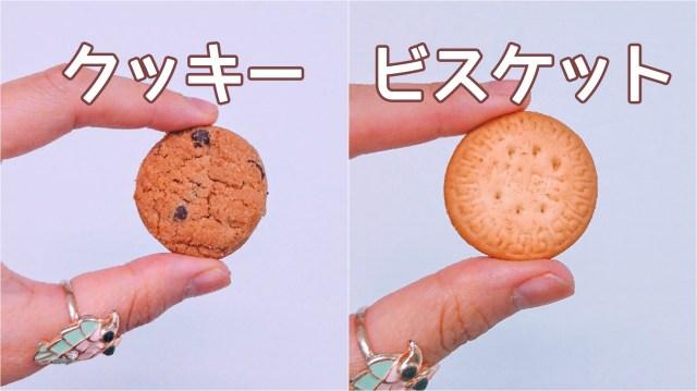 【素朴な疑問】クッキーとビスケットの違いって何!? 調べてみたら日本と海外で違う食べ物になることも…!
