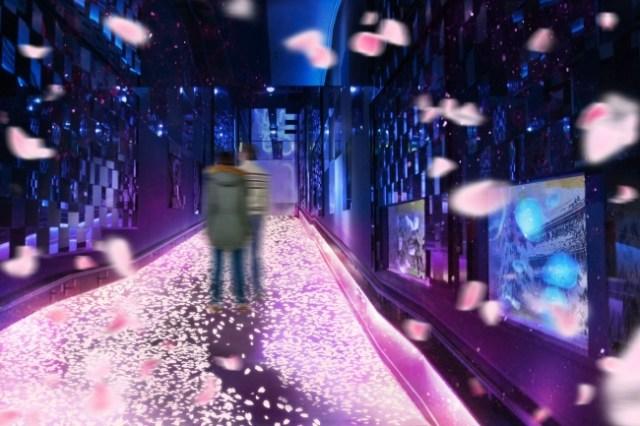 すみだ水族館の新展示「桜とクラゲ」が幻想的! ゆらゆら漂うクラゲと桜の花びらが舞う長いトンネルがロマンチックです