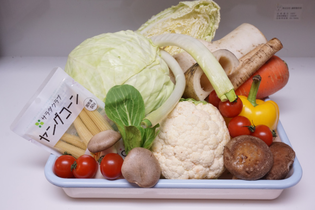 子供が嫌いな野菜はピーマンよりも「ナス」! 野菜嫌いな子供は成長すると改善されるなど、子供と野菜の調査結果が興味深いよぉ〜
