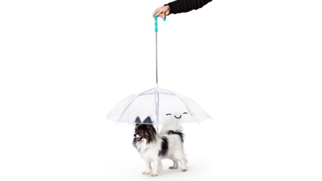 「ペット用の傘」が衝撃デザインで二度見しちゃう!? フライング タイガー コペンハーゲンのペットグッズが攻めている