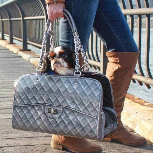 高級バッグに見えるけど…犬用キャリーバッグ!! 贅沢なデザインだけどワンコ的に快適かどうかが気になります…