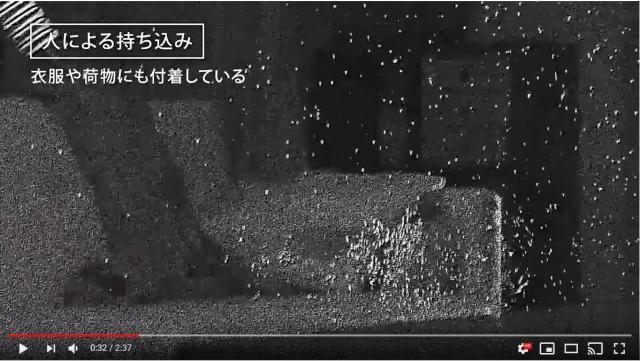 うぎゃ〜!特殊技術で撮影した「室内で舞う花粉の動画」にびっくり…見てるだけで鼻がムズムズしてきます