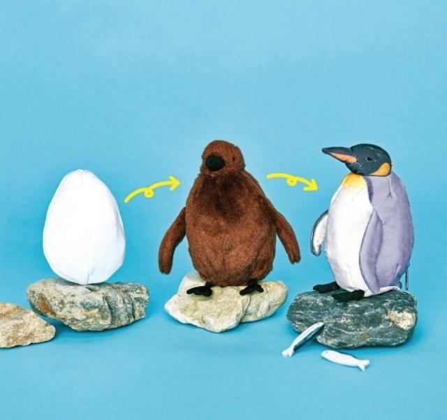 これが水族館の本気! 卵 → ヒナ → 成鳥 と成長していく「ペンギンぬいぐるみ」をフェリシモ×海遊館が発売! こだわりが尋常じゃありません…