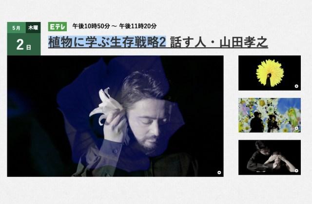 Eテレが生んだ謎番組・山田孝之の『植物に学ぶ生存戦略』に新作キターーー! GW中に放送されるんだって