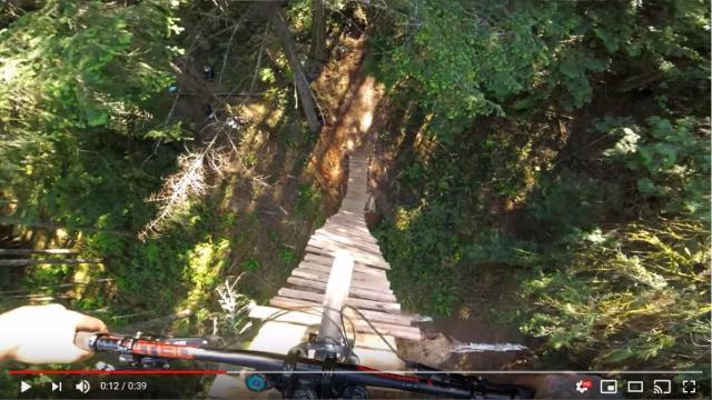 【高所恐怖症注意】高さ20mの木の上からマウンテンバイクで直滑降する動画にビビる…ジェットコースターに乗ってる気分を味わえます