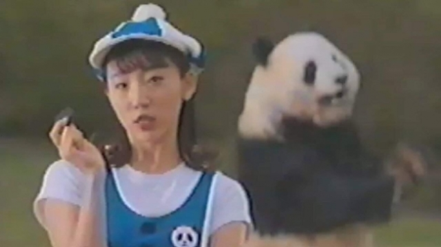 開始48秒後にパンダとお姉さんが謎の覚醒! 終始カオスなオレオのWEB動画『パンダンス』