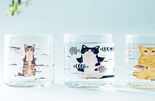 水をそそぐと猫が大きく見えるグラスが癒し度満点♡ 泳ぐ魚たちをジーッと見つめるニャンコが愛らしすぎるよ~っ!!