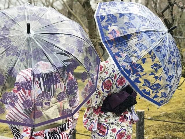 和傘からインスピレーションを得たビニール傘が上品で艶やか! あじさいや金魚など風情あるデザインです