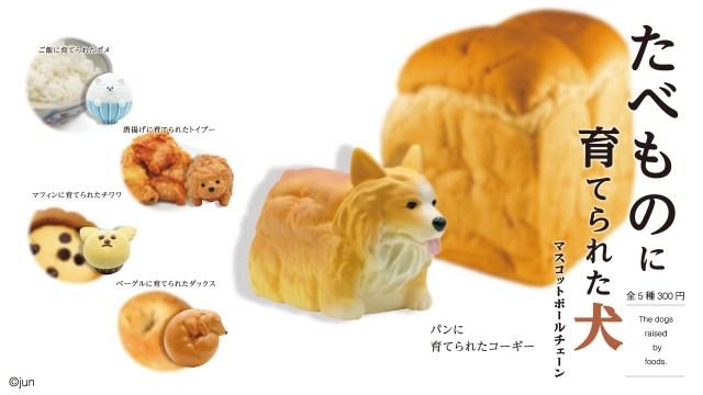「たべものに育てられた犬」のカプセルトイが斬新すぎ! 唐揚げからトイプードル、食パンからコーギーなど
