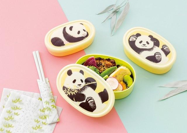 パンダがすくすく成長する!? 3サイズのお弁当箱セットでランチタイムを癒やしのひとときに♡