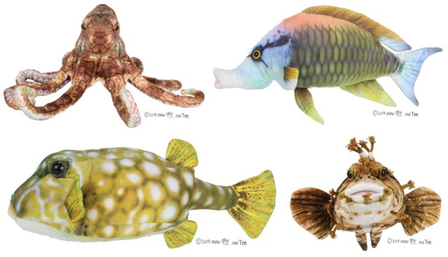 リアルすぎてギョギョーーーッ! さかなクンプロデュースの「おさかなぬいぐるみ」が本物の魚にしか見えません