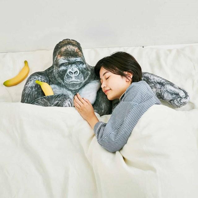 東山動植物園のイケメンゴリラが超リアルな腕枕クッションに! たくましい胸板も完全再現で朝まで安眠できそうよ