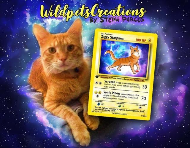愛するペットの「ポケモンカード」を作ってくれるだと…!! 特性や弱点など各種スペックも書き込んでくれます★