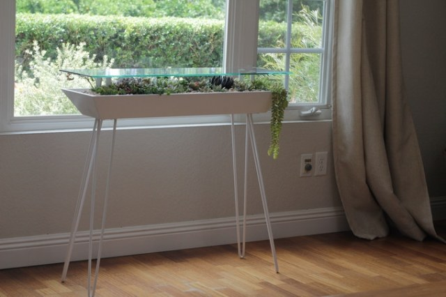 プランターとテーブルが融合! ガラスの天板から植物が見える「ブルーミング・テーブル」が素敵です