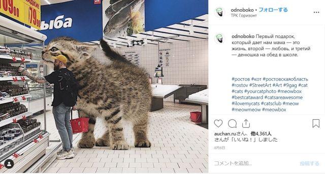 なんてメルヘン! 世界に大きな猫がいたならば…を生み出すロシアのインスタグラマーの作品が素敵です