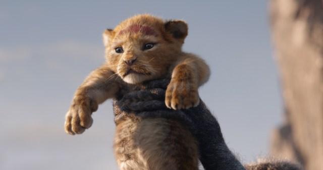【映画レビュー】超実写版『ライオン・キング』は脅威の映像美! 本当にアフリカにいる気分になるけど物語は少し惜しい部分も…!