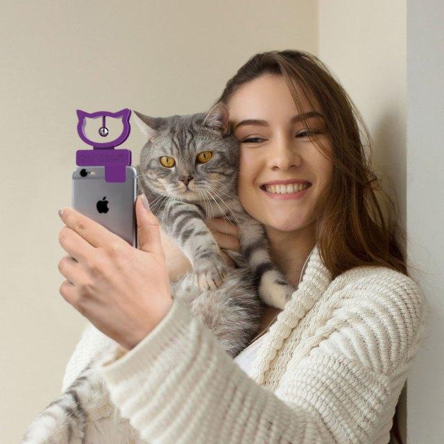 猫との自撮りがはかどるぞぉ! 鈴を鳴らして猫の目線をカメラに向けるグッズが画期的☆