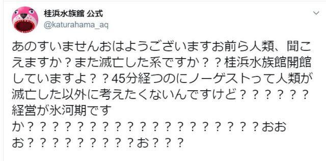 桂浜水族館の公式ツイッター、お客さんが来なすぎて混乱「あのすいませんおはようございますお前ら人類、聞こえますか」