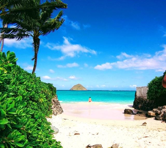 【実録】ハワイ旅行中に勧誘された「ヒルトンホテルのタイムシェア」を購入して光の速さでクーリングオフした話