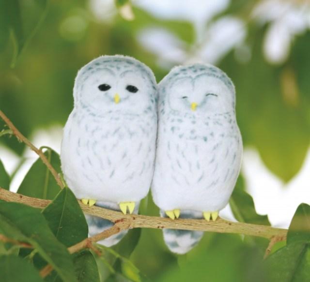 【復興支援】北海道・厚真神社の守り神として人気のフクロウたちがマグネットになった! 2羽が力を合わせて重い物も支えてくれるよ