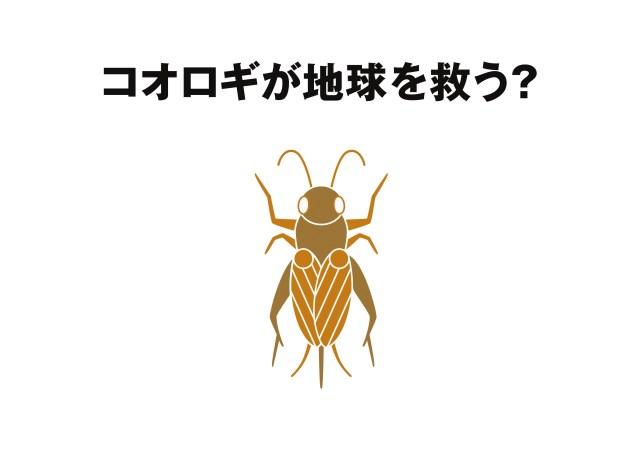 無印良品が昆虫食「コオロギせんべい」を発売するよ! 実は今後の環境問題を考えた超マジメな開発でした