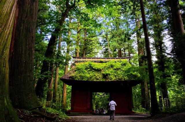 初もうでの参考になるかも? トリップアドバイザーによる「旅好きが選ぶ!日本人に人気の神社仏閣 2019」TOP5をご紹介