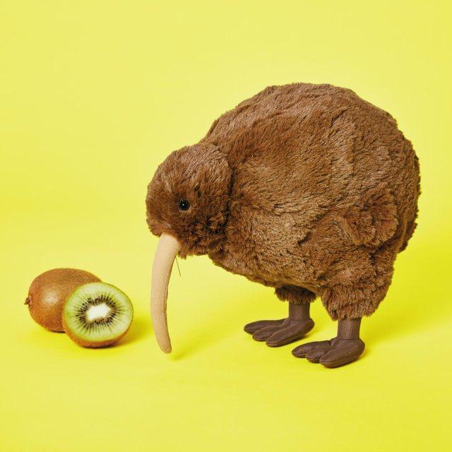 キウイフルーツにそっくりな鳥「キーウィ」のぬいぐるみが通販でも買える! フェリシモと天王寺動物園のコラボアイテムです
