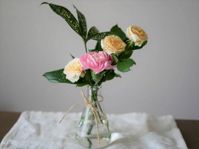 農水省「お花を飾ってみませんか?」と提案 / 卒業式や謝恩会の中止でお花も余りそうなのです