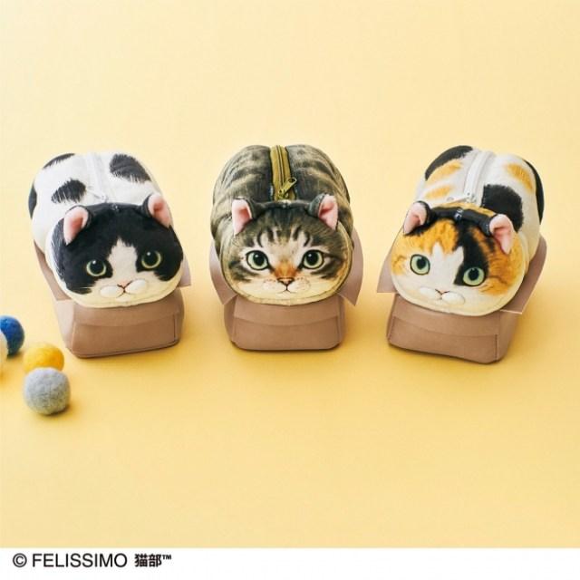 小さな箱に無理やり入る愛しい猫の姿がポーチに! 「なにか?」というドヤ顔も可愛すぎるのです